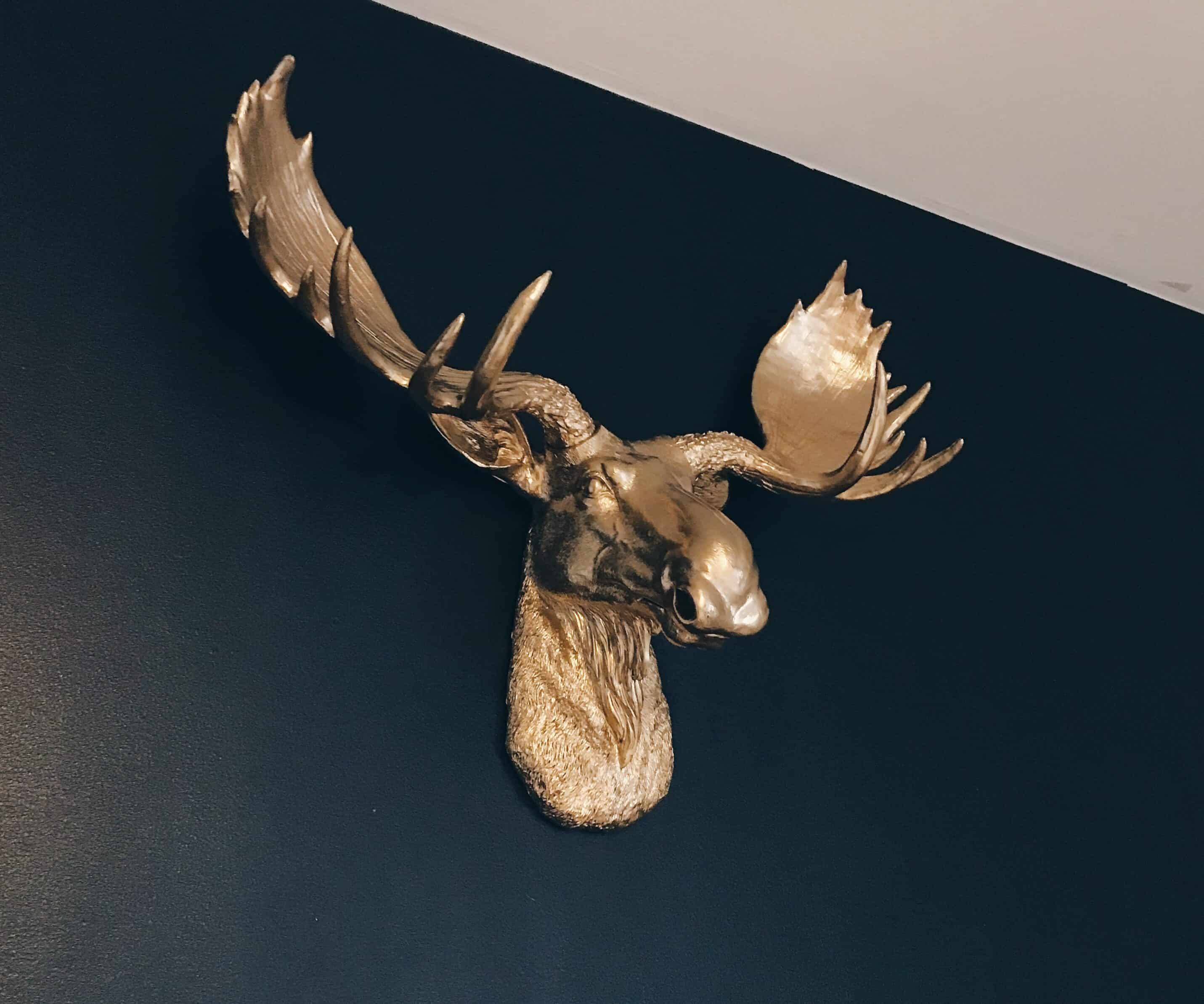gold faux taxidermy moose