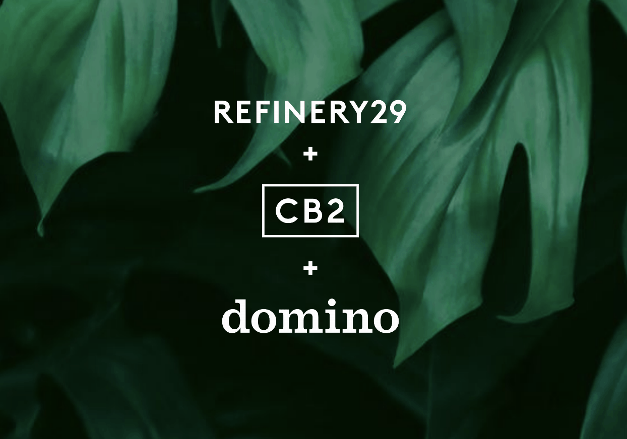 domino-refinery29-cb2
