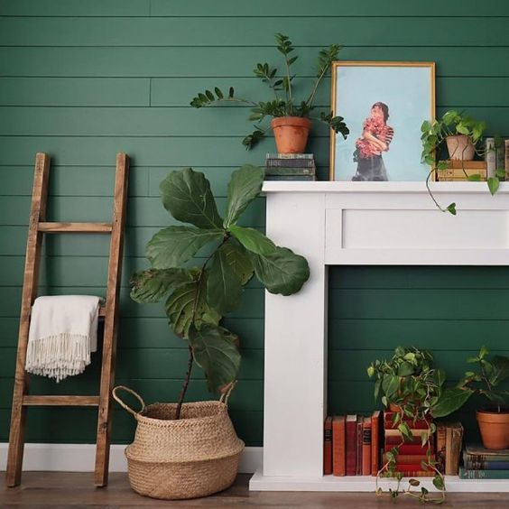 sherwin-williams-evergreens-green-paint-colors
